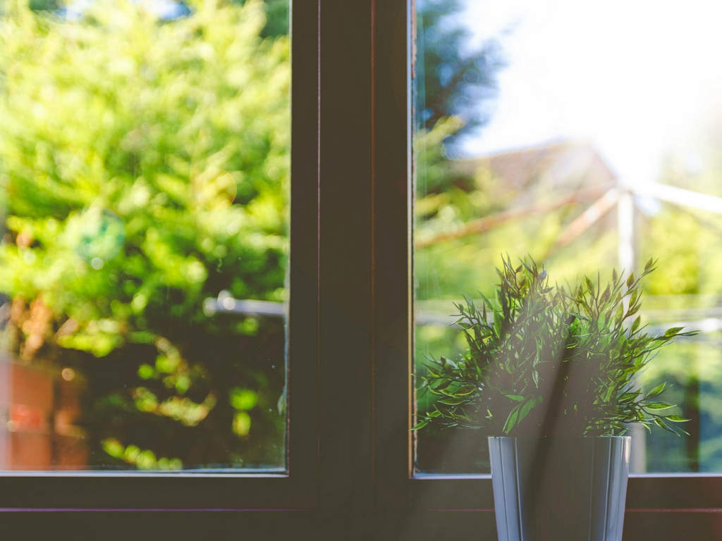 When Should I Replace My Windows